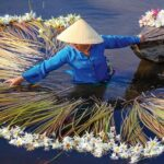 Charms of the Mekong Delta